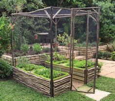 Walk-in raised beds-- I love this idea, especially for pet owners. Keep the cat off the lettuce!