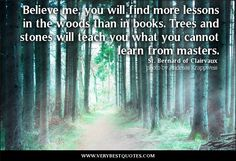 quotes about woods and trees - Google Search