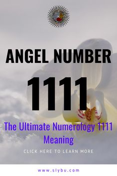 Angel Number 1111 - The Ultimate Numerology 1111 Meaning 1111 Numerology, Numerology Birth Date, Numerology Numbers, Numerology Chart, Angel Number 11, Angel Number Meanings, Spiritual Meaning, Spiritual Guidance, Keep Seeing 1111