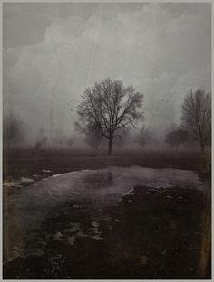 iPhoneography, Bitter End – Armin Mersmann
