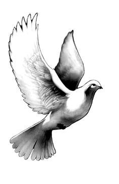 Dove tattoo by noliestotell.deviantart.com on @deviantART