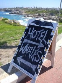 In the South African town of Hermanus this season, whale-spotting from the shore is the activity of choice! Cool Countries, Countries Of The World, Windsor Hotel, Whale Watching, Doggies, South Africa, Shells, African, Seasons