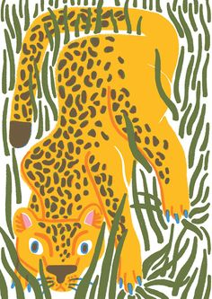 7l-is-for-leopard---dream-alphabet