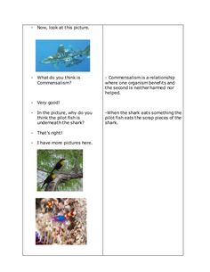 A Detailed Lesson Plan in Science in Grade IV I. enumerate the five ecological relationshi… Lesson Plan Format, Lesson Plan Examples, Science Lesson Plans, Science Lessons, Ecology, Lp, How To Plan, Zaragoza, Environmental Science