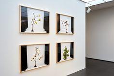 Ausstellungen – Samuelis Baumgarte Galerie e.K. Gallery Wall, Frame, Home Decor, Exhibitions, Picture Frame, Decoration Home, Room Decor, Frames, Home Interior Design