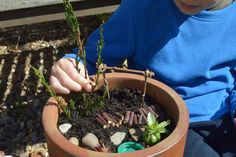 How to make a miniature garden with materials found in nature materials - a fun…