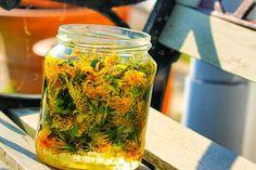 Nagyanyáink ősi gyógyszere: így készíts gyermekláncfű tinktúrát! - Tudasfaja.com How To Dry Basil, Mason Jars, Food, Therapy, Witches, Nature, Essen, Mason Jar, Meals