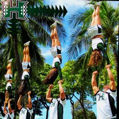 University of Hawaii cheer Hawaii Life, Aloha Hawaii, Hawaii Travel, Cheerleading Quotes, College Cheerleading, Hawaii Athletics, Uh Athletics, Cheer Coaches, Team Cheer