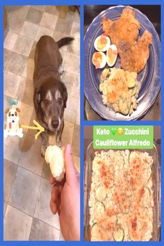 I swear Sarge isn't VEGAN, but when Dad is Cooking my babies knowYou can find Breaded pork chops and more on our webs. Thin Pork Chops, Breaded Pork Chops, Pork Rinds, Deviled Eggs, Bread Recipes, Cauliflower, Zucchini, Keto, Tasty