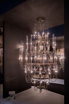 Combining the modern age and luxury, the Gala Chandelier is a revival experience from the palatial apogee. Made with brass and clear crystal glass, this imposing item is perfect for any entrance or ball room. 2018 Interior Design Trends, Luxury Lighting, Traditional Design, Clear Crystal, Great Rooms, Modern Interior, Modern Design, Awards, Chandelier