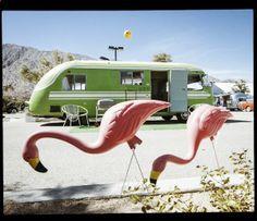 #vintage #trailer #flamingo