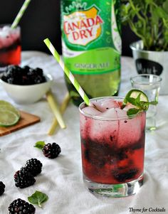 Blackberry Lemongrass Mojito~ Thyme for Cocktails