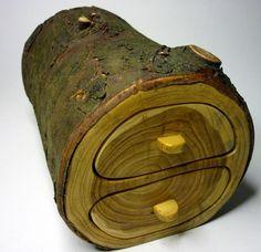 Box made of tree limb