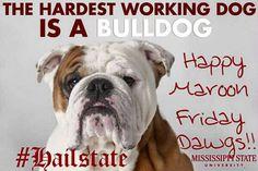 MSU Bulldog