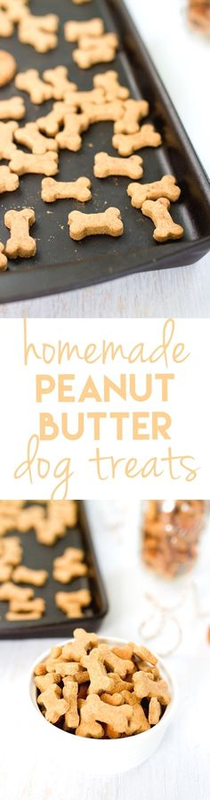 Homemade Peanut Butter Dog Treats is part of Dog snacks - Making homemade snacks for your fourlegged friend is a breeze with this simple peanut butter dog treat recipe Pups will love the peanut butter flavor! Homemade Peanut Butter Dog Treats Recipe, Homemade Dog Treats, Dog Treat Recipes, Dog Food Recipes, Recipe Treats, Homemade Butter, Homemade Recipe, Puppy Treats, Diy Dog Treats