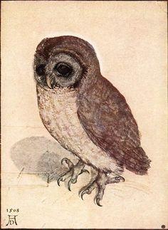 Dollhouse Miniature Dark Framed Picture of a Durer Owl