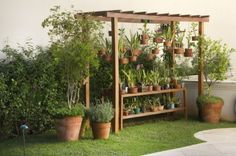 Organic Gardening Information Key: 3932419551 Simple Greenhouse, Greenhouse Gardening, Container Gardening, Orchid House, Rogers Gardens, Shade House, Orchids Garden, Pergola Kits, Garden Projects