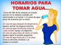 Horarios para tomar agua