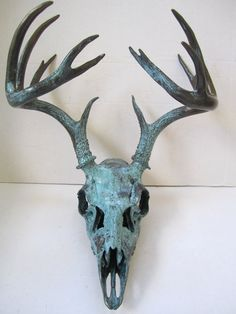 Aqua Patina Deer Skull bronze skull and antler art! Its a large white tail deer skull covered with bronze reactive paint containing real bronze particles.An aqua patina aging solutions is applied to the bronze metallic paint. These paint and aging solution combinations create a beautiful, authentic blue patina. A clear non-yellowing protective sealer and top coat is applied to chemically arrest the oxidized metal finish, minimizing any further aging to this skull.