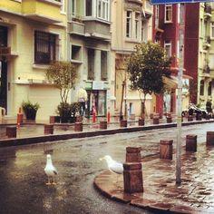 Cihangir, İstanbul, Türkiye