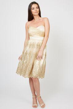Shop the Official TFNC London website Bridesmaid Dress Styles, Wedding Bridesmaids, Lila Gold, Tfnc, Fashion Dresses, Midi Dresses, Chiffon Fabric, Formal Dresses, Wedding Dresses