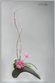 Beautiful Flowers Pictures, All Flowers, Flower Pictures, Arreglos Ikebana, Arte Floral, Chinese New Year, Flower Designs, Floral Arrangements, Glass Vase