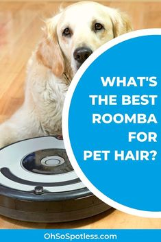 It can be frustrating when your pet's hair sticks to everything and keeps showing up on your floors. These 5 best Roomba picks for pet hair will get your home back to order. Millionaire Lifestyle, Cute Dogs, Cute Babies, Animal Nutrition, Pet Nutrition, Mobile Vet, Dog Quotes, Dog Supplies, All Dogs