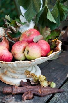 love the old bowl with apples