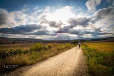 Somewhere on the trail - Camino de Santiago 2015 Somewhere on the trail between: Villambistia and Villafranca Montes de Oca
