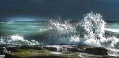 Sea and nature - Ambleteuse - France