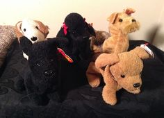 7af6b36e74b LOT of 5 TY Beanie Babies DOGS with GIGI WHISKERS TUFFY SCOTTIE RUFUS  Ty