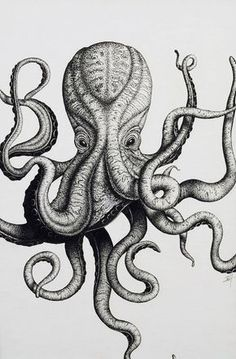 Octopus tattoo idea.
