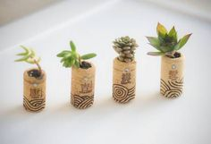 12 bonitas formas de decorar la casa con plantas de interior - Tendenzias.com