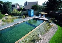 Natural swimming pools are eco friendly swimming pools. Aqua Landscape Design specialise in providing the beautiful combination of swimming pool with natural pond features giving a 'Natural Swimming Pond' with no harsh chemicals. Natural Swimming Ponds, Natural Pond, Swimming Pools, Outdoor Ponds, Ponds Backyard, Garden Ponds, Pond Design, Landscape Design, Garden Design