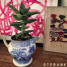 The most adorable succulent paired with our Mini Haik framed textile
