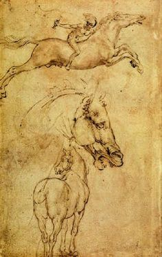 Leonardo da Vinci, Study of Horse. This is horse drawing is very detailed and nicely toned Leo paid tons of attention towards detail and capturing the realism of objects people and animals, in other terms he draw what he saw as he was exploring things visually.