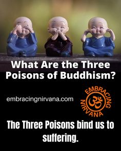 What Are the Three Poisons of Buddhism? The Three Poisons bind us to suffering. Learn more about how to end suffering by visiting Embracing Nirvana. #threepoisons #buddhism #buddha #embracingnirvana #RGRamsey