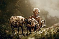 Abe Less Photography © - Google'da Ara