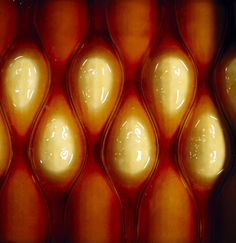 Cartesian Wax 1 Prototype for a Breathing Skin By Neri Oxman Polyurethane, machinable wax Museum of Modern Art, NY Neri Oxman, Liquid Resin, 3d Printed Objects, Bio Art, Cnc Wood, Massachusetts Institute Of Technology, Wax Museum, Green Technology, 3d Prints