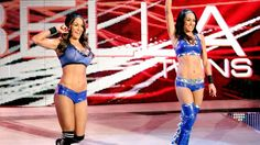 """""""Total Divas"""" stars Nikki and Brie Bella will be presenters at the 2014 MTV European Music Awards, airing Sunday night in 155 countries. Wwe Total Divas, Nxt Divas, Tamina Snuka, Surf Tattoo, Nikki And Brie Bella, Wwe Pictures, Aj Lee, Wrestling News, Sport Girl"""
