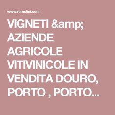 VIGNETI &  AZIENDE AGRICOLE VITIVINICOLE IN VENDITA DOURO, PORTO , PORTOGALLO  | Douro Superiore Porto, Cima Corgo, Baixo Corgo