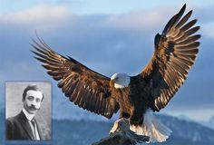 Din lumea celor care nu cuvântă (1910)-Schiţe şi povestiri. Vulturul de Emil Gârleanu (Povestire) S-a ridicat, deodată, din prăpastia întunecoasă, umedă, a munţilor falnici. Şi doritor de lumină, în această dimineaţă scăldată de soare, a întins aripile, ca o flamură, ...