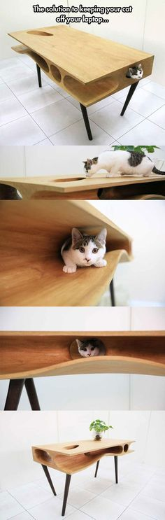 A Cool Table That Your Cat Can Have Fun Without Disturbing Your Work.