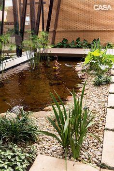 Jardim tem lago ornamental que também serve para nadar -as folhagens pontudas das espécies Barba-de-serpente (Ophiopogon jaburan), à esquerda; e falso-íris (Neomarica caerulea), à direita.