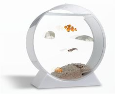 If you're looking for a pet, but find that dogs to require too much effort and sea monkeys don't have enough of an edge, then jellyfish may make the perfect pet.  The desktop package includes the aquarium, filtration system and air diffuser, rocks, multicolor LED with remote (!), and a few live, non-stinging moon jellyfish and food packets, and costs $500.  Jellyfish will live for about a year.