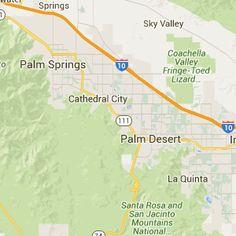 Dog-friendly Palm Springs