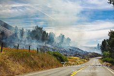 Putting out a forest fire in Montana