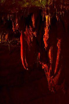Про Сатаплию за один раз вот так просто и не рассказать. Помимо динозавров там есть 5 карстовых пещер, но для посетителей открыта только 1. В ней довольно прохладно (стабильная температура +14) и сыро, зато невероятно красиво. Главным смысловым центром пещеры служит сталактит в форме сердца. Причем он напоминает именно анатомическое сердце, а не его округлый символ который принято у нас изображать.  После пещеры по дорожке поднимаемся вдоль обрыва к большой стеклянной смотровой площадке. Она…