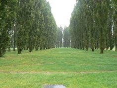 The Green Cathedral - Wikipedia