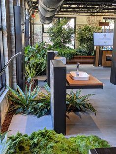 Fytogreen Australia | LinkedIn Planter Boxes, Planters, Australia, Patio, Outdoor Decor, Home Decor, Window Boxes, Decoration Home, Terrace
